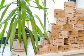 Evabox dėžutės